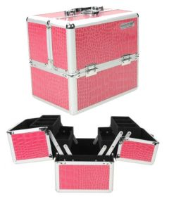 Masters Professional Tool Box Pink Crocodile Pattern Silver Frame Black Linning